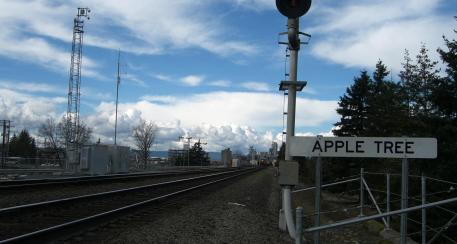the sign here is similar to roadsigns letting train engineer know whereabouts. just to the right is the location of the oldest apple tree in the PNW dating to 1825.