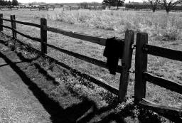 coat and fence fort vancouver, washington. well pardner let me lay my jacket here on the fence and go check the lower forty. be right back!