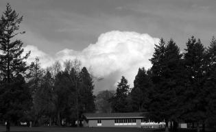 occasionally black and white coupled with nature, is good vancouver barracks