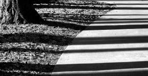 shadows across the sidewalk