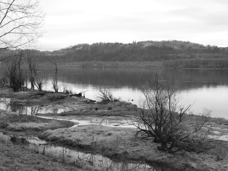 the banks of the columbia