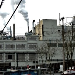 years of good and bad ideas has helped the plant to expand.