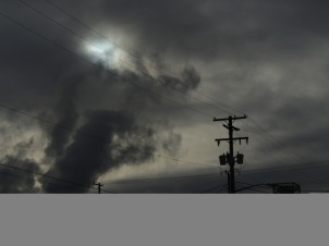 l love this shot as it looks like a lion attacking the powerline.