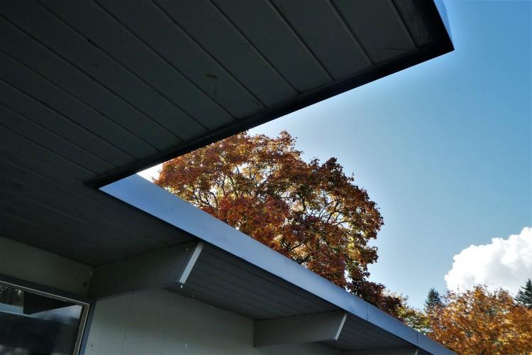 the angle of fall