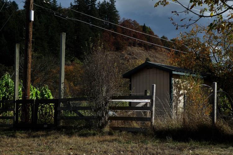 community farm in eugene, oregon