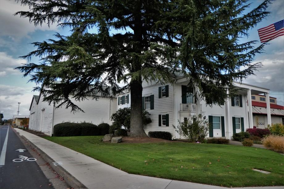 same colonial building dwarfed by tall doug fir