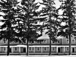 These tall, stately pines in front of the Vancouver Barracks in Washington State appeared to me like soldiers standing at attention in front of their barracks,